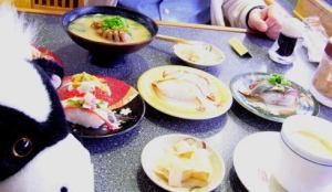 お寿司大好き~今月のおすすめはな~に?