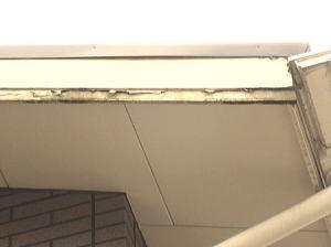屋根の周りの縁部分 もうボロボロ