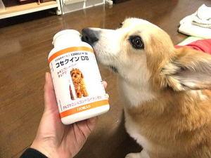 『コセインDS』グルコサミン&コンドロイチン配合