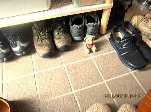 なぜか玄関にくまちゃんのおもちゃが・・・