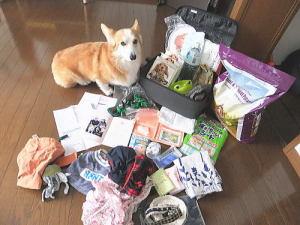 愛犬用震災グッズのリストアップ