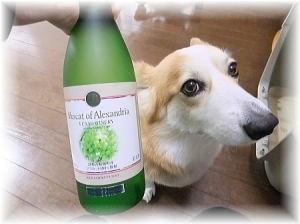 ふなおワイナリーのマスカット・オブ・アレキサンドリアのワイン