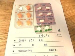 お薬3種;プロナミド錠・シンクル250・ガスター10㎎