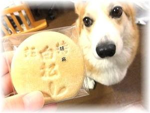 仙台『白松がモナカ』の大好きな胡麻モナカ