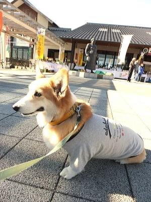 雷電くるみの里の江戸時代の超有名なお相撲さんの雷電さんの銅像の前でパチリ