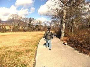 芝生内はダメダメなので、傍の歩道を散歩・・・寂しい