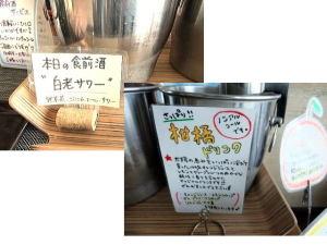 本日の食前酒2種;白老サワー(野草茶・ジンジャーエール・サワー)&柑橘ドリンク