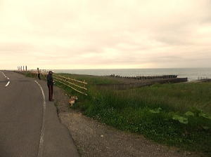 風もあり、虎杖浜のタラコ売り場などがあります