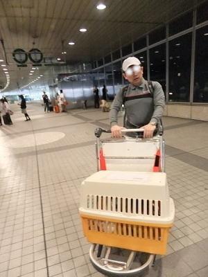 新千歳空港に到着してバスを降りてすぐカートを持って来よう