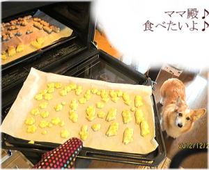 岡山犬さんから頂いた熊本県産の安納芋で作ったクッキー