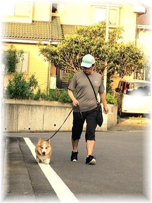 2014年8月21日 パパ殿と久しぶりに散歩