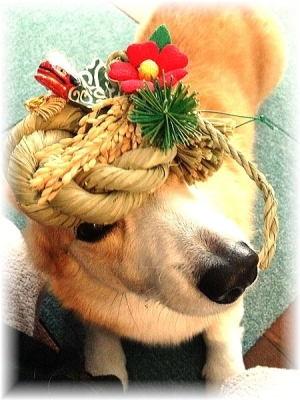 お正月飾り 盛ってみたけど 見えにくい