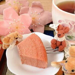 春季限定 百年乃樹 桜子(さくらこ) 1512円