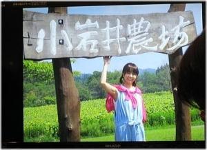 小岩井農場と萌ちゃん