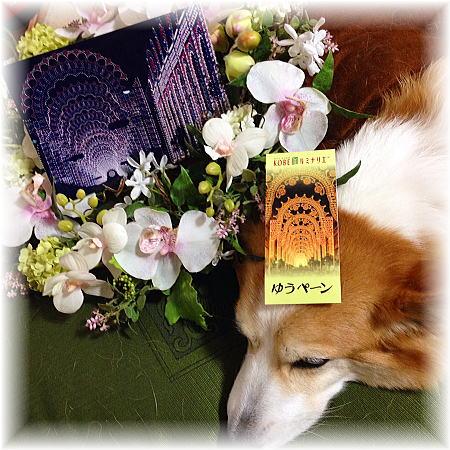 阪神淡路大震災から21年目になりました